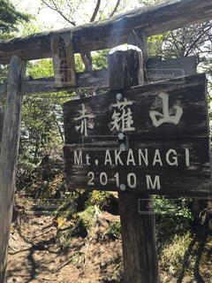 赤薙山 山頂の写真・画像素材[1080419]