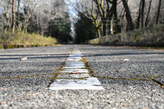 道の写真・画像素材[1081087]