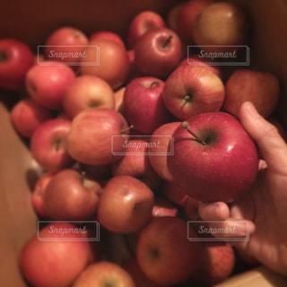 りんごいっぱいの写真・画像素材[1080923]