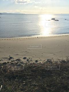 海岸の輝きの写真・画像素材[1080926]