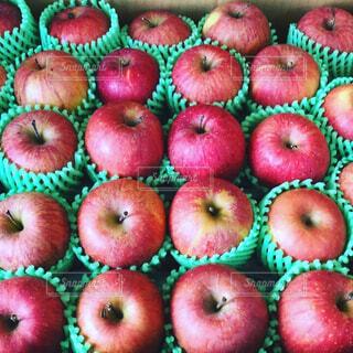 りんごの写真・画像素材[4391461]