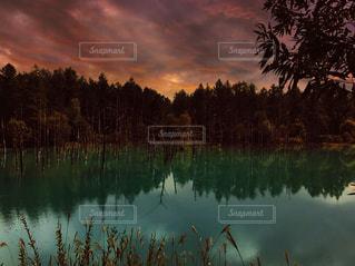 木々 に囲まれた水の体に沈む夕日の写真・画像素材[1082319]