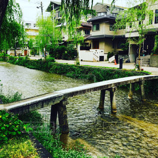 京都一本橋の写真・画像素材[1082110]