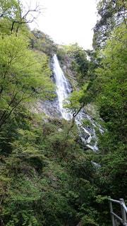滝の写真・画像素材[1084934]
