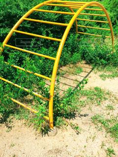 無人の公園の写真・画像素材[1303183]