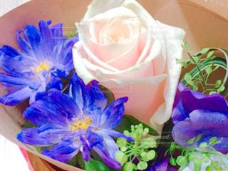 紫色とピンクの花束の写真・画像素材[1086709]