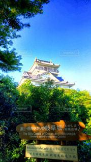 岐阜城の写真・画像素材[526823]