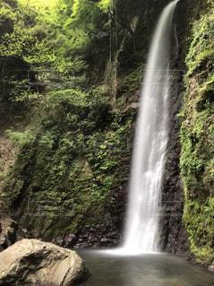 養老の滝の写真・画像素材[1159335]