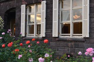 ピンクの花は建物の前に立っています。の写真・画像素材[1089207]