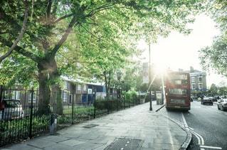 ロンドンバスのある風景の写真・画像素材[1088429]
