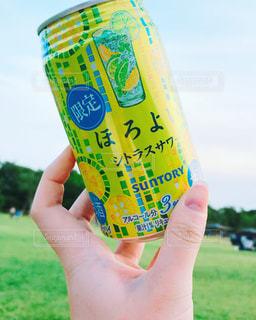 芝生でほろよいの写真・画像素材[1262429]