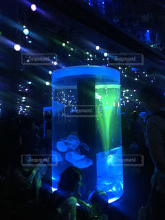 水族館のクラゲの写真・画像素材[1287670]