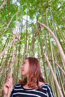 竹林の中の女性の写真・画像素材[1099434]