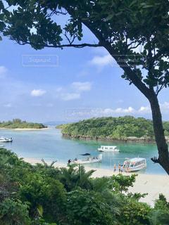 川平湾の眺めの写真・画像素材[1367558]