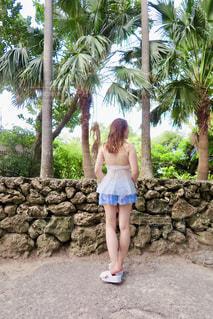 岩の前でヤシの木の横に立っている女性の写真・画像素材[1367560]