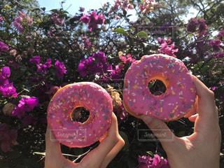 花の前でピンクのドーナツを持っている手の写真・画像素材[1278343]