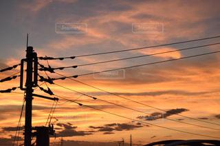 夕焼けの前の信号の写真・画像素材[2427462]