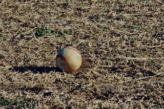 ボールの写真・画像素材[1093588]