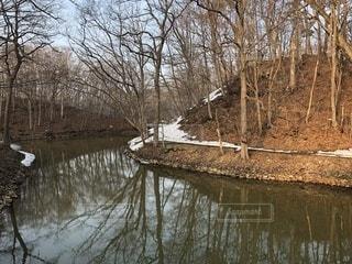 水の池の写真・画像素材[1087443]