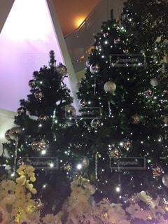 クリスマス ツリー - No.1088595