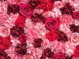ピンクの花の花束の写真・画像素材[1088633]