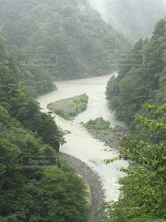 曇り空の吊り橋の写真・画像素材[1088728]