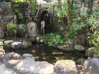 水車が見える池の写真・画像素材[1088730]