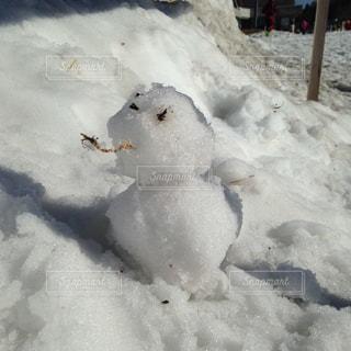 雪だるまつくろの写真・画像素材[1088764]