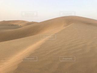 砂丘の写真・画像素材[1103107]