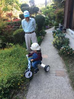 庭で三輪車こいでますの写真・画像素材[1089729]