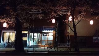 春の夜の写真・画像素材[1089395]