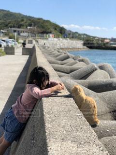 猫をかわいがる子どもの写真・画像素材[1089793]