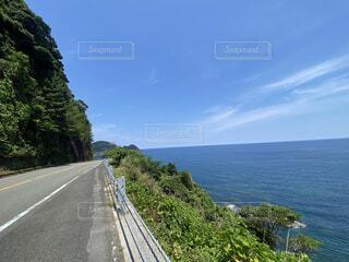 海へ行こう!の写真・画像素材[4769077]