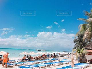 カリブ海ビーチの写真・画像素材[1192815]
