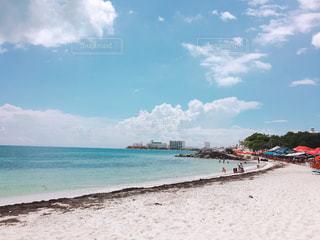 カリブ海ビーチ 昆布添えの写真・画像素材[1202829]