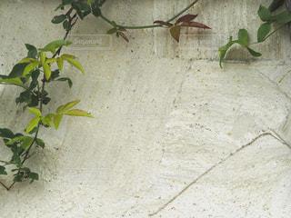 アンティーク風な壁の写真・画像素材[1092543]