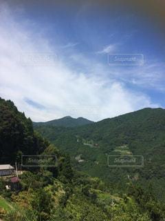 背景の山の茂みのグループの写真・画像素材[1092389]