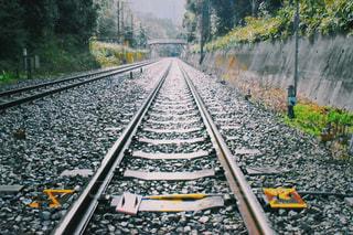 下り列車を走行する列車は森の近く追跡します。の写真・画像素材[1118220]