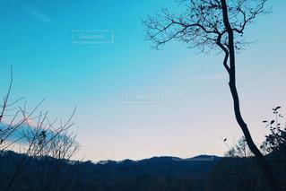 背景の山と木の写真・画像素材[1640360]