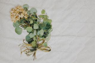ベッドの上に座って花の花瓶の写真・画像素材[1640365]
