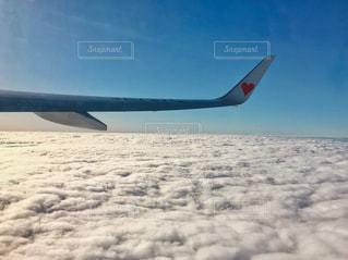 飛行機と雲の写真・画像素材[1692450]