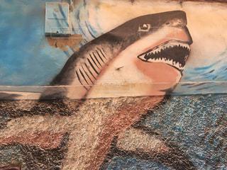 サメのウォールアートの写真・画像素材[2618100]
