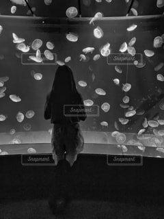 クラゲ水槽の前に立っている女性の写真・画像素材[3854436]