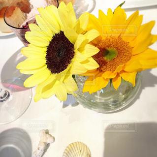ひまわりのテーブル花の写真・画像素材[1097742]