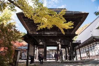 バック グラウンドで明治神宮と背景の木と家の写真・画像素材[1113080]