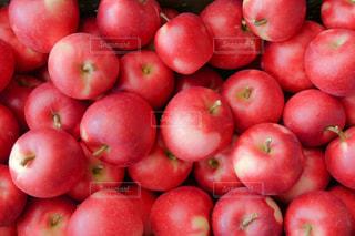 たくさんのりんごの写真・画像素材[1113101]