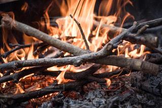 焚き火の写真・画像素材[1113111]