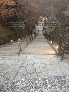 清水寺の階段の写真・画像素材[1103456]