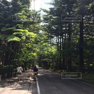 軽井沢でレンタサイクルの写真・画像素材[1095845]