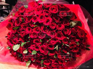 100本の赤いバラの写真・画像素材[1096300]